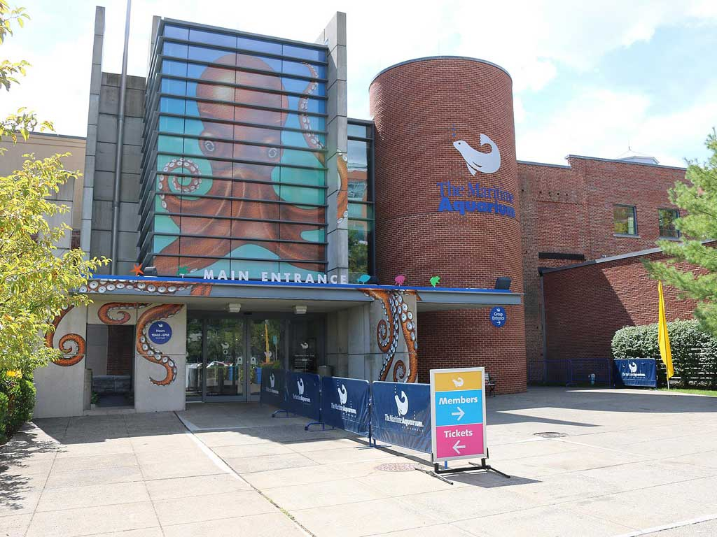 The Maritime Aquarium